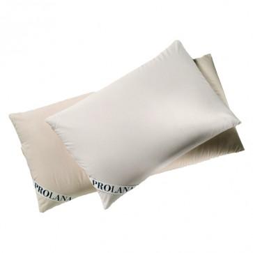 Millet cushion